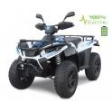 LINHAI ATV Electric